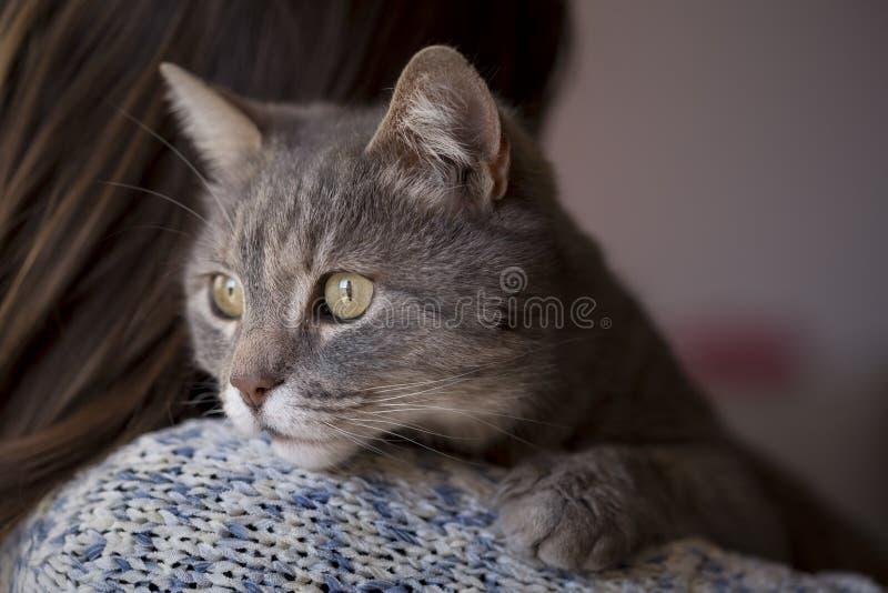 Frau und eine Katze lizenzfreie stockfotos