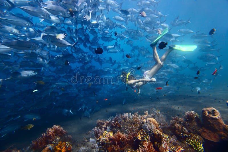 Frau und Fische lizenzfreies stockfoto