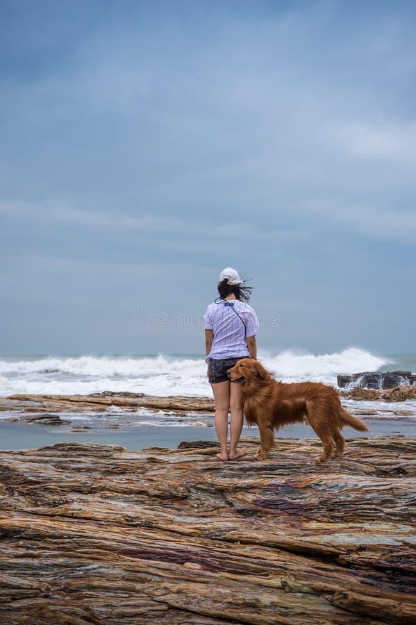 Frau und golden retriever am Strand stockbild