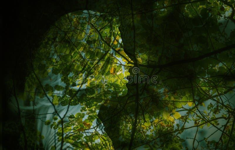 Frau und Herbstwald stockbild