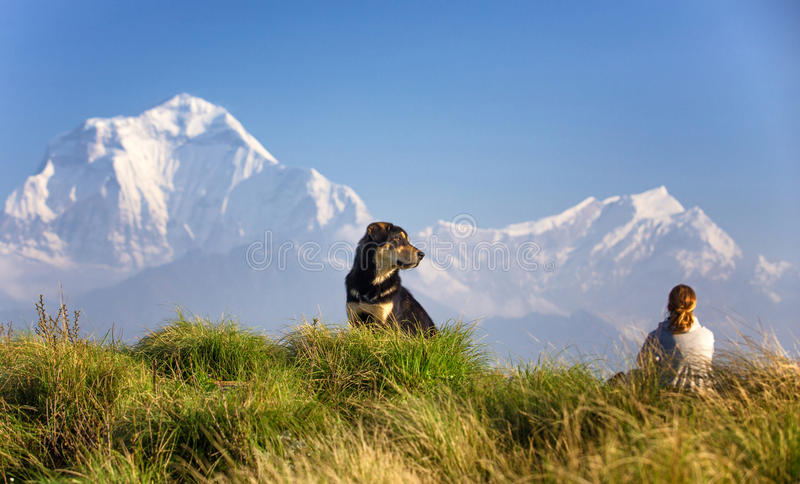 Frau und Hund bei Poon Hill im Himalaja lizenzfreies stockbild