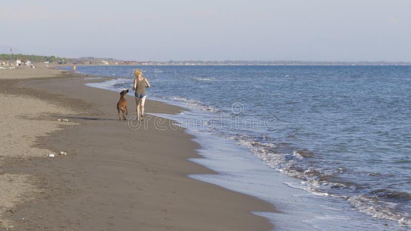 Frau und Hund durch das Meer stockbild