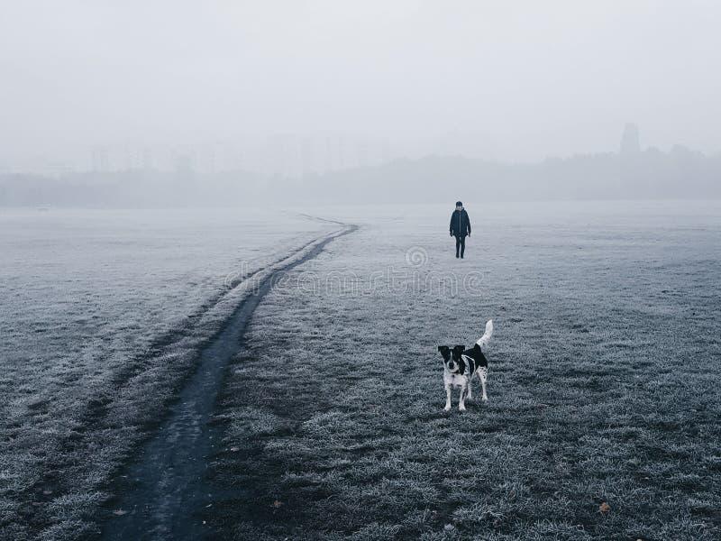 Frau und ihr Hund, die in den Nebel gehen lizenzfreie stockbilder