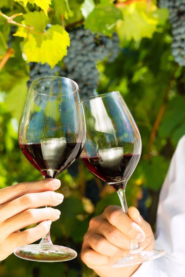 Frau und Mann in trinkendem Wein des Weinbergs lizenzfreie stockbilder
