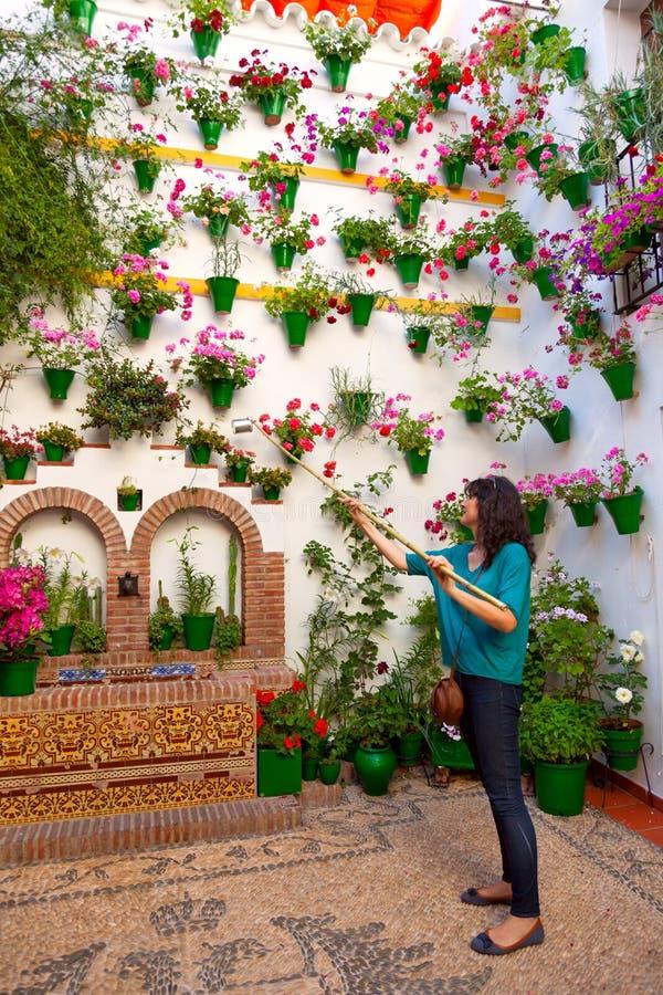 Frau wässert die Blumen auf Wand, Cordoba-Patio Fest, Badekurort stockbild