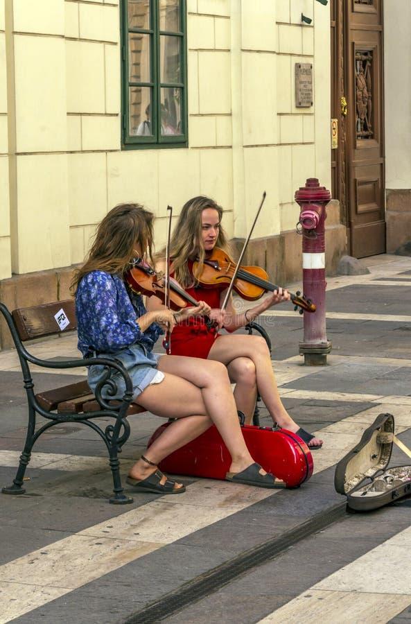 Frau zwei, welche die Violine spielt lizenzfreie stockfotos