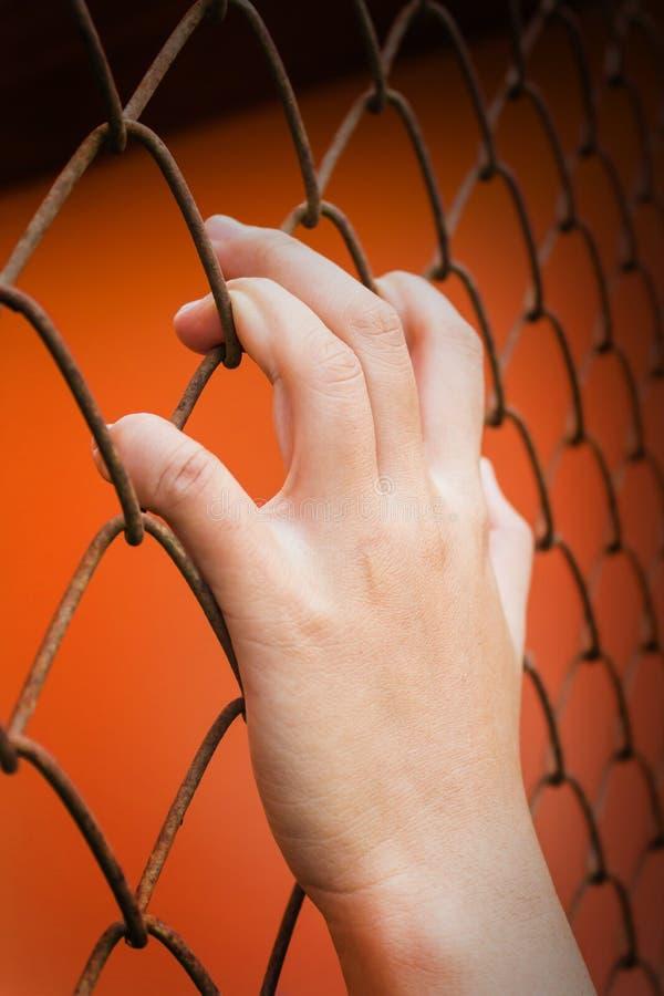 Frauen übergeben anziehende Eisenstange auf orange Hintergrund, einsperren Fühlung lizenzfreie stockbilder