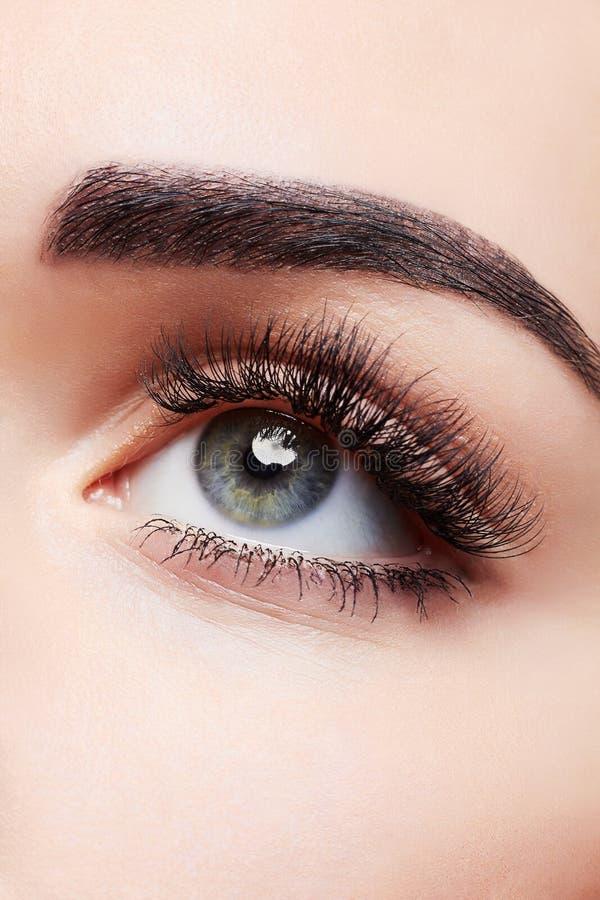 Frauen-Auge mit schönem Make-up stockfotografie