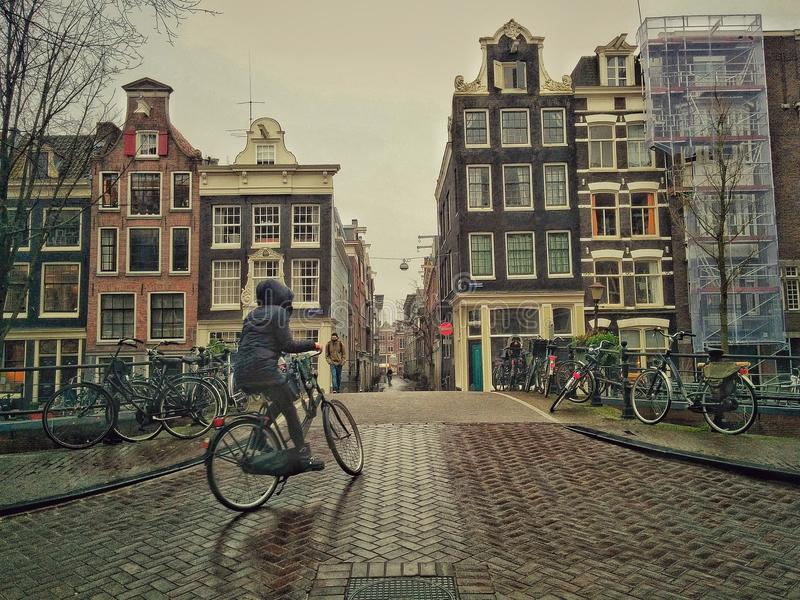 Frauen, die in Amsterdam radfahren stockbild