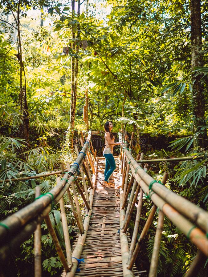 Frauen, die in einem tropischen Dschungel auf einer Brücke übernachten Wasserfall in Bali lizenzfreie stockbilder