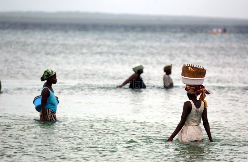 FRAUEN, DIE IN MOSAMBIK FISCHEN lizenzfreies stockfoto