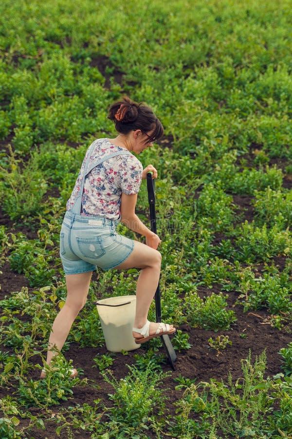 Frauen graben eine Schaufel im Feld lizenzfreie stockfotos