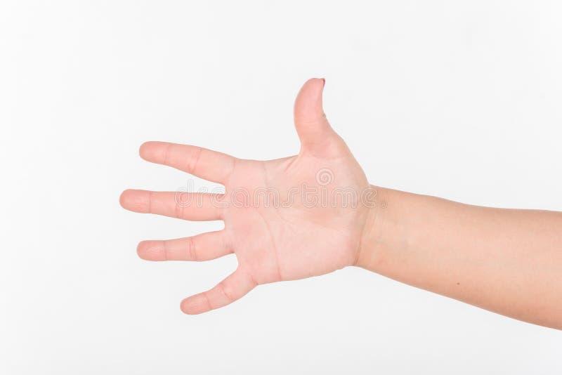 Frauen-Hand und alle fünf Finger Weißes bakcground lizenzfreie stockbilder