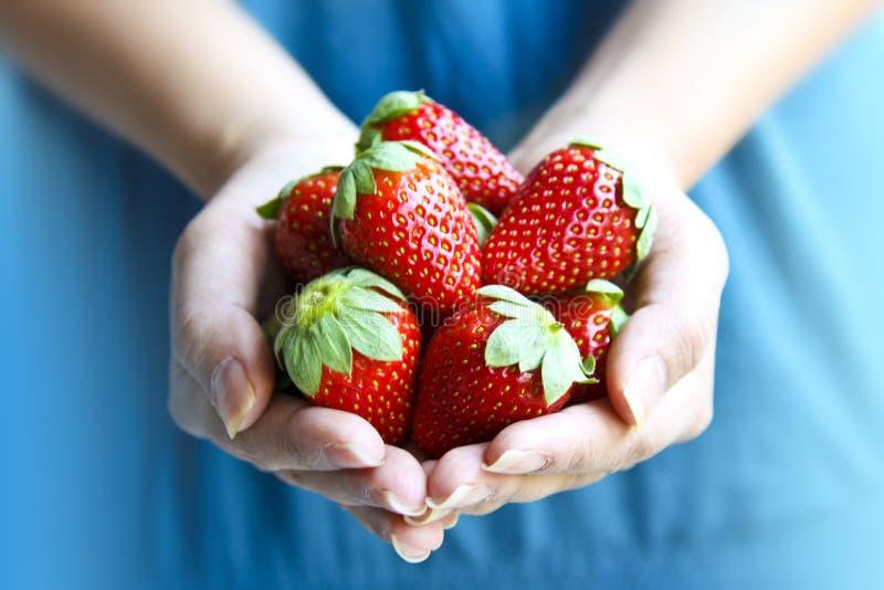 Frauen-Holding-Erdbeeren stockfotografie
