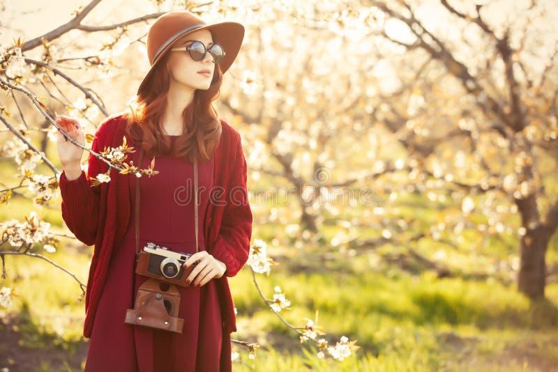 Frauen mit Kamera im BlütenApfelbaum arbeiten im Garten stockfoto