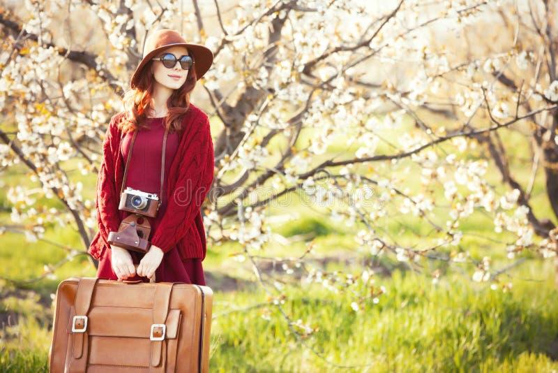 Frauen mit Koffer im BlütenApfelbaum arbeiten im Garten lizenzfreies stockbild