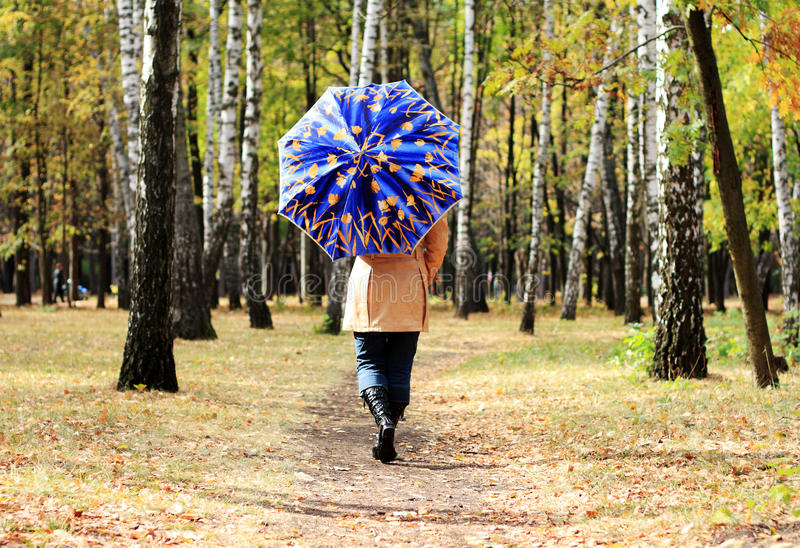 Frauen mit Regenschirm stockfotografie