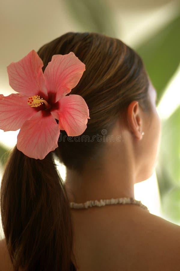 Frauen-tragende Hibiscus-Blume stockbilder