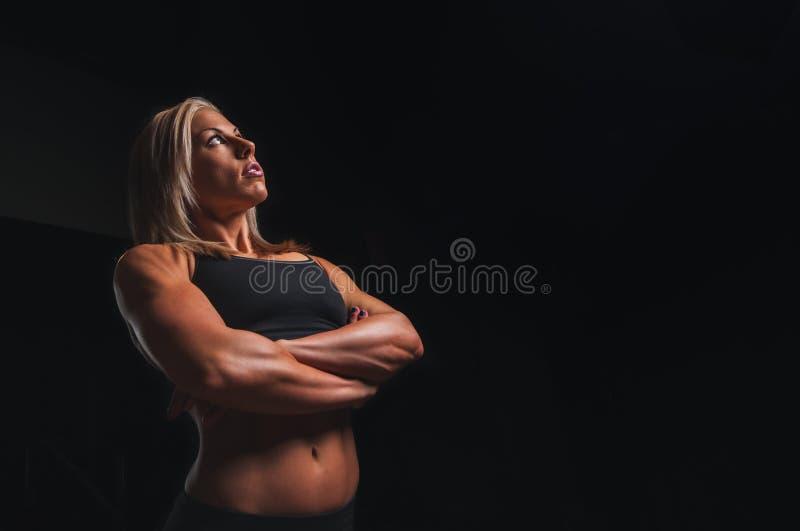 Frauenbodybuilder stockfotos