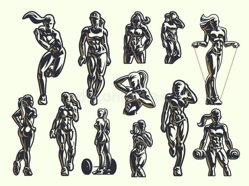 Fraueneignungs-Emblemsatz stock abbildung