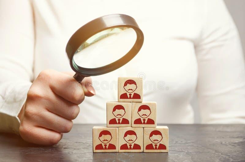 Frauenführer auf der Suche nach neuen Angestellten und Spezialisten Personalauswahl und -management in einem Team Der Chef errich lizenzfreie stockfotos