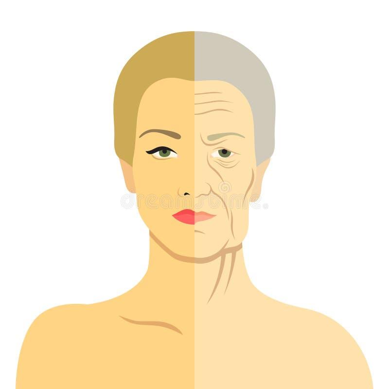 Frauengesicht vor und nach Altern Junge Frau und alte Frau mit Falten Die gleiche Person in ihrer Jugend und in hohen Alter lizenzfreie abbildung