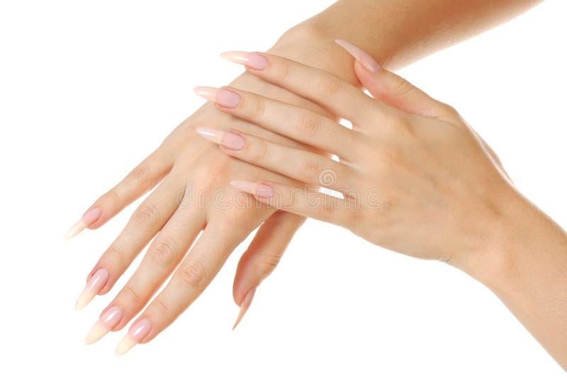 Frauenhände lizenzfreie stockfotografie