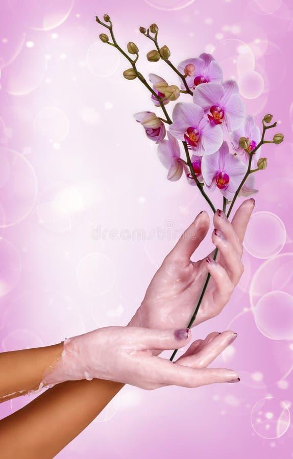 Frauenhände  lizenzfreies stockbild
