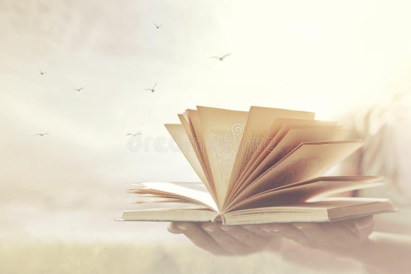 Frauenhände bieten ein Buch an, das zur Freiheit und zur Fantasie offen ist stockfotografie