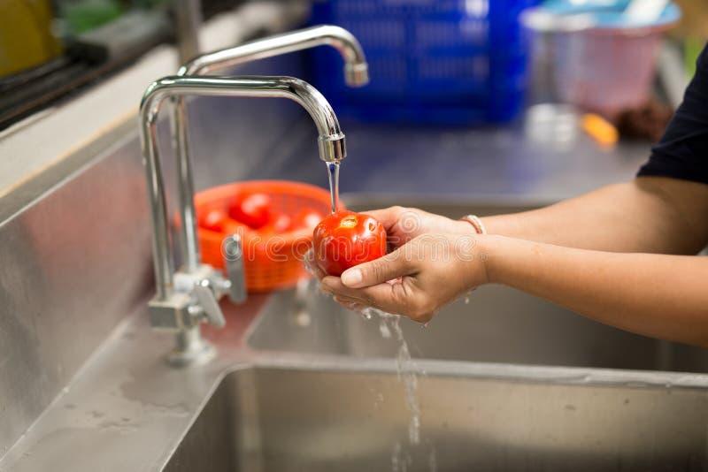 Frauenhände, die frische Tomaten unter Küche waschen lizenzfreie stockfotos