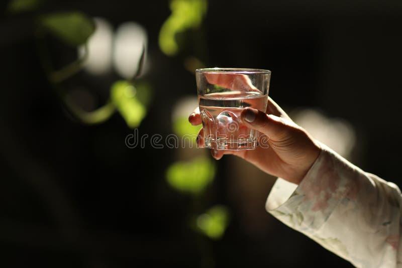 Frauenhände lokalisierten und hielten ein Glas Wasser auf einem dunklen Hintergrund mit grünen Blättern Gesunder Morgen stockbilder