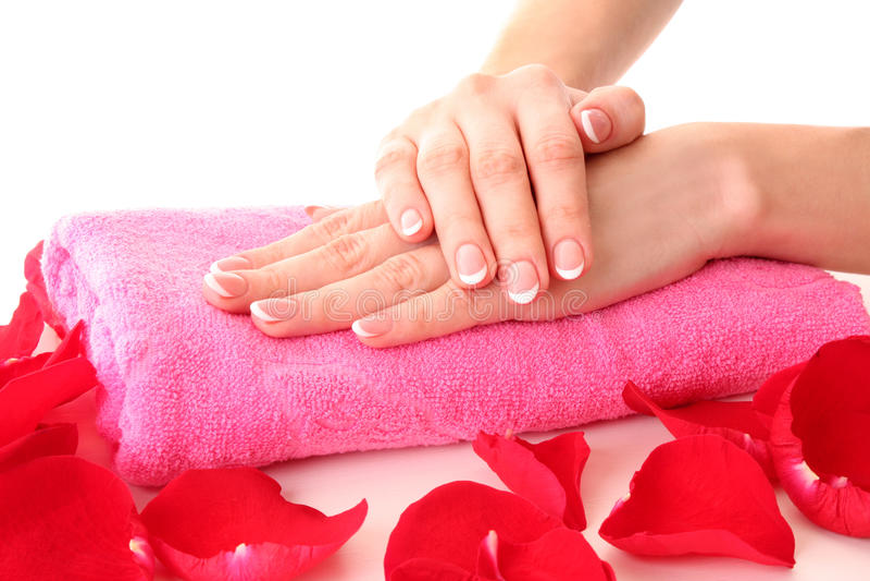 Frauenhände und rosafarbene Blumenblätter stockfotos