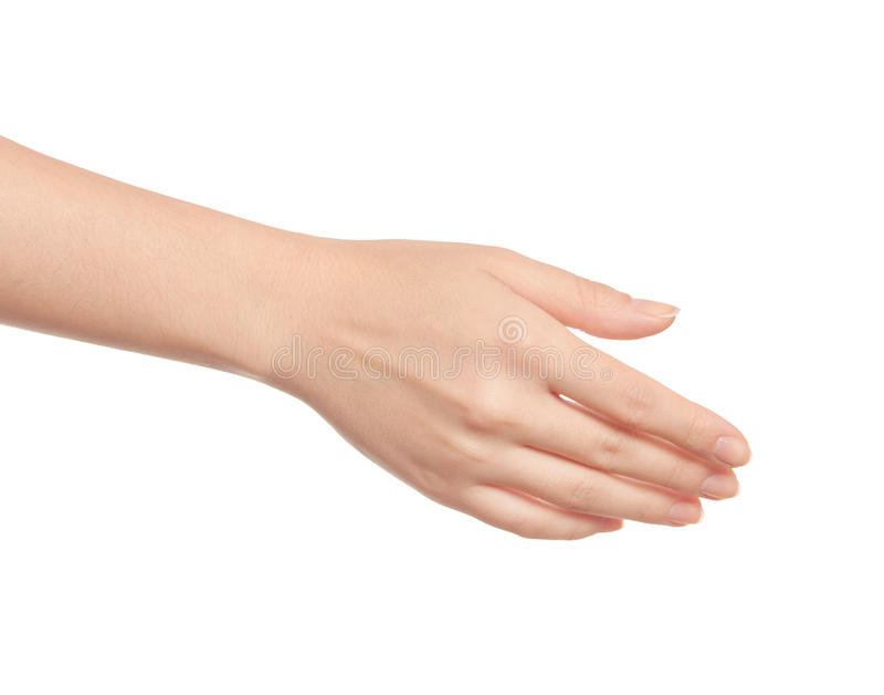 Frauenhand lizenzfreie stockfotos