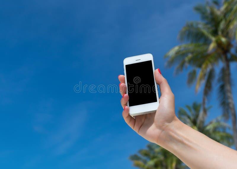 Frauenhand, die ein leeres intelligentes Telefon auf dem Strand zeigt lizenzfreie stockfotos