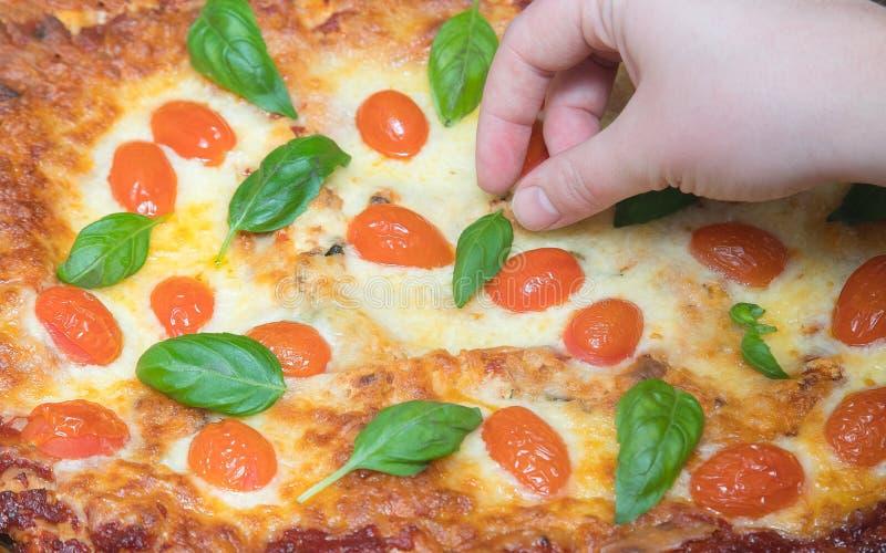 Frauenhand, die vegetarische Lasagne mit Kräutern im Backblech verziert, das gerade aus dem Ofen heraus genommen wurde lizenzfreie stockfotografie