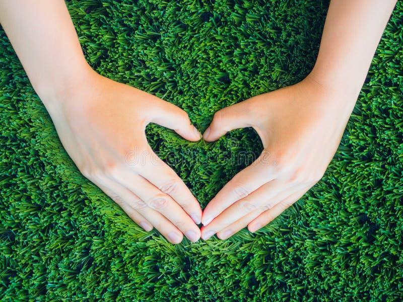 Frauenhand in Form des Herzens auf Hintergrund des grünen Grases lizenzfreies stockfoto