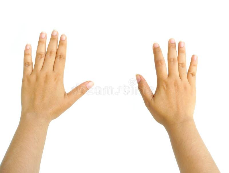 Frauenhand getrennt stockfoto