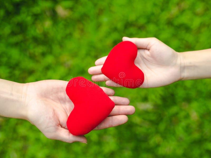 Frauenhand schicken dem Mann rotes Herz und Mannhand schicken rotem Herzen das Mädchen Austauschherzen, Liebe, Paar, Valentinstag lizenzfreie stockbilder