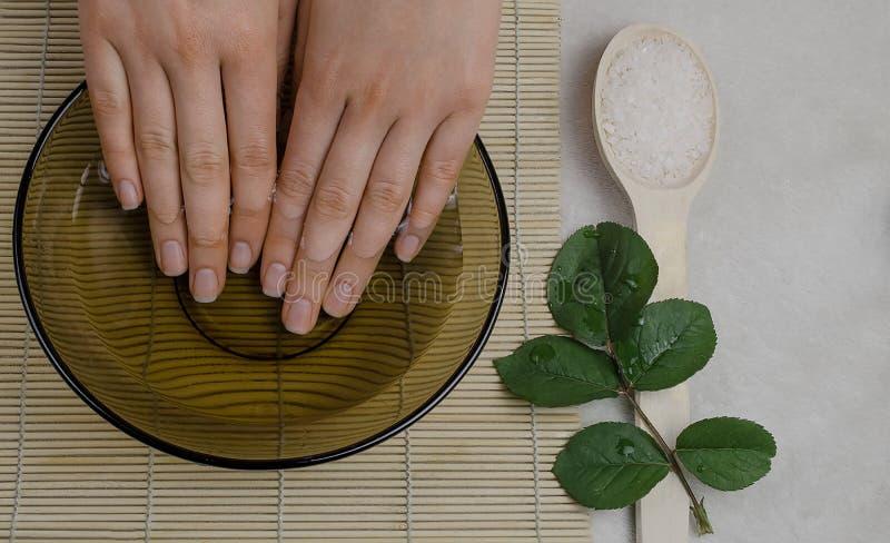 Frauenhand- und -nagelsorgfalt lizenzfreie stockfotos