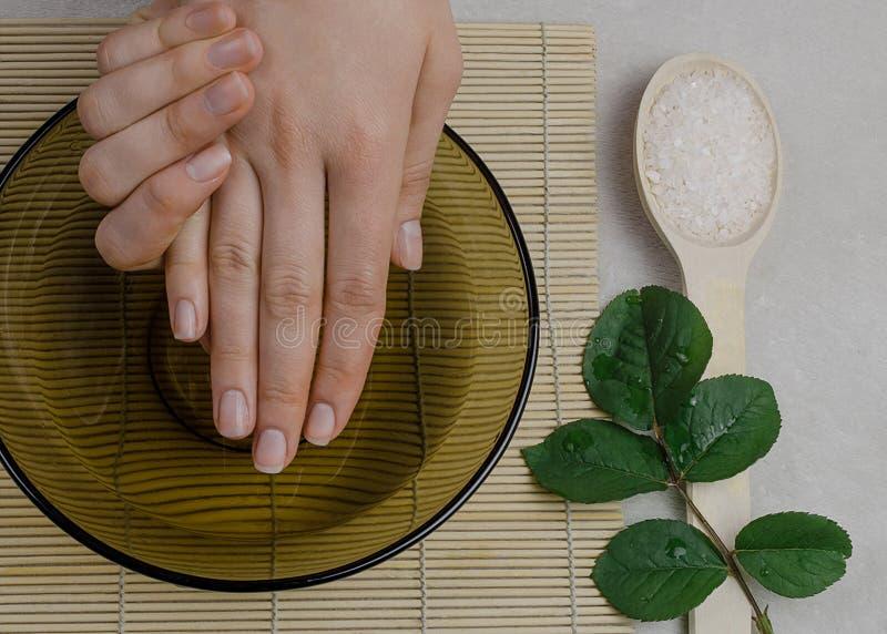 Frauenhand- und -nagelsorgfalt lizenzfreie stockfotografie