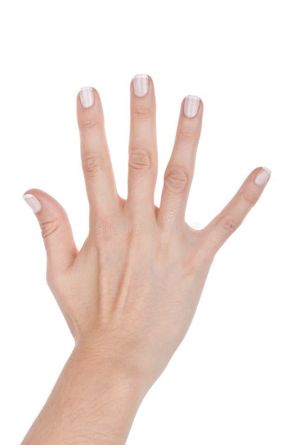 Frauenhand zeigt fünf Finger lizenzfreies stockfoto