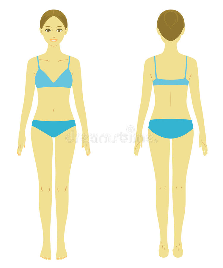 Frauenkörpermodell vektor abbildung