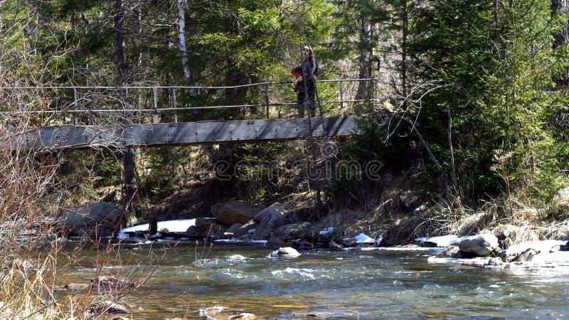 Frauenreisender ist auf Brücke über Gebirgsfluss im Frühjahr media Reisender kreuzt Eisenbrücke über Gebirgsfluss stockbilder