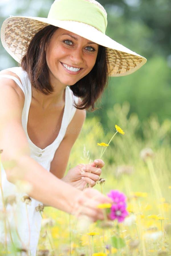 Frauensammelnblumen lizenzfreies stockbild