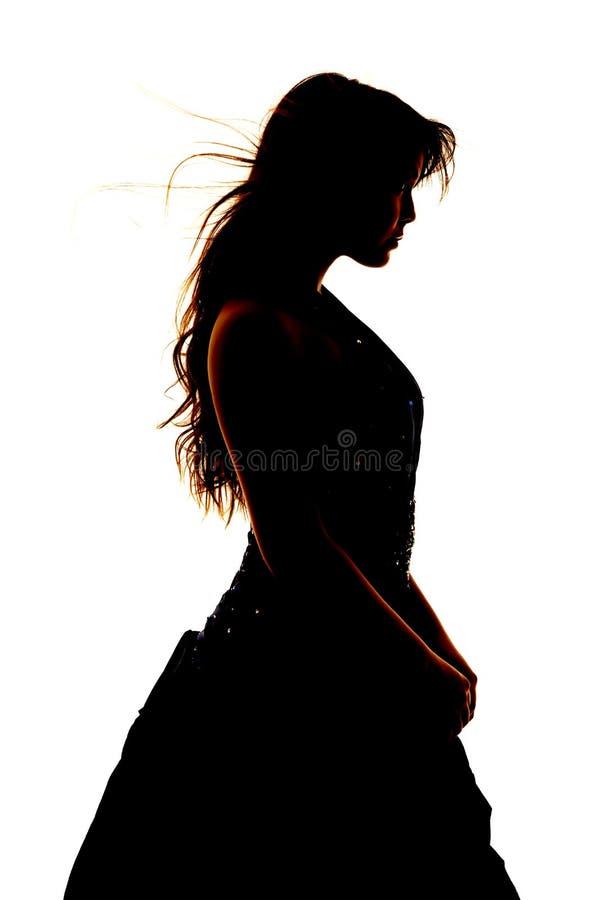 Frauenschattenbild-Gesellschaftskleidungsabschluß stockfoto