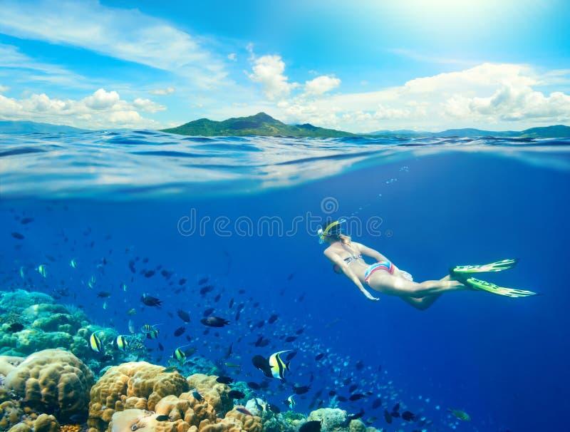 Frauenschwimmen um ein Korallenriff stockbilder