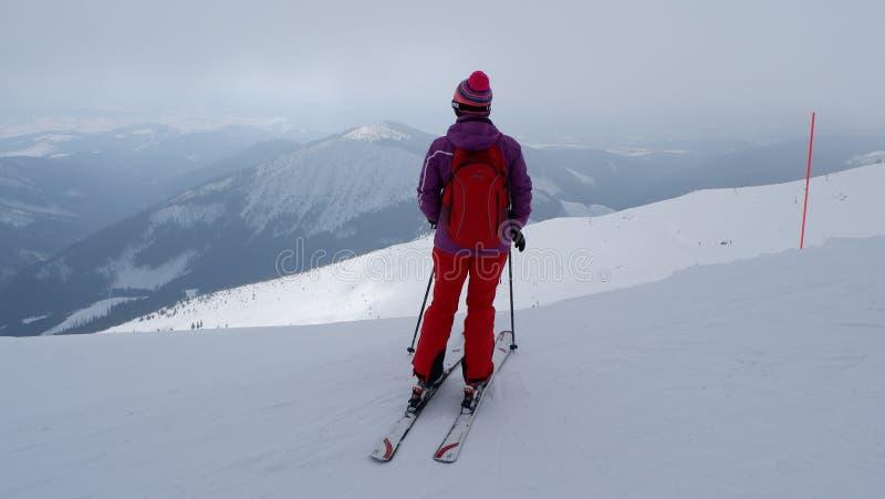 Frauenskifahrer, der die beste Bahn findet Skifahrer, der unten zum Tal schaut Warterechter Moment Beste Wahl Chopok, niedriges T lizenzfreie stockfotos
