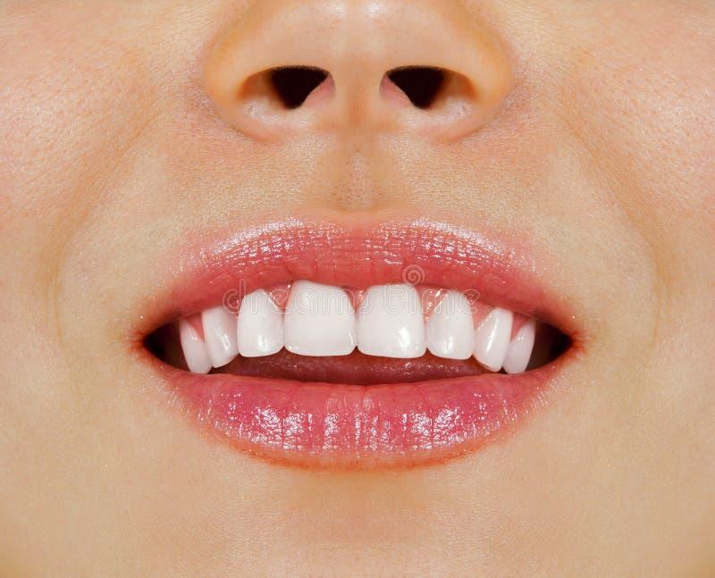 Frauenzähne lizenzfreies stockbild