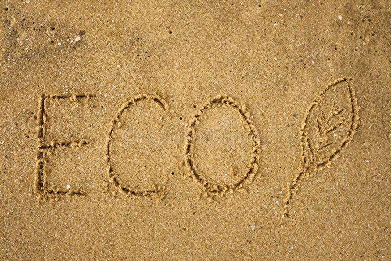 Frawn di parola ECO sulla spiaggia gialla sabbiosa fotografia stock libera da diritti