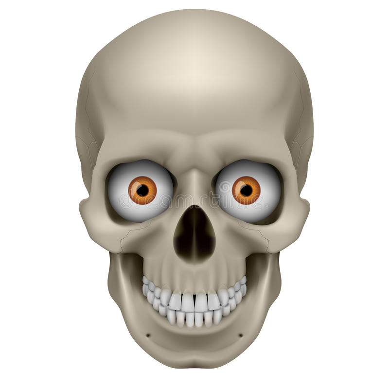 Download Freaky Human Skull stock vector. Image of digital, color - 24492875